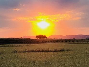 Surrounding Fields at Sundown